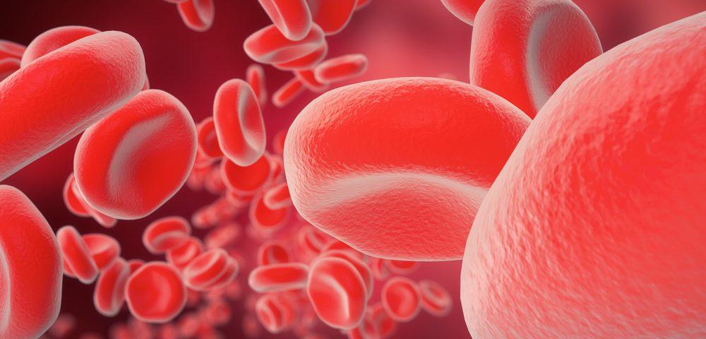 El metabolismo del hierro no juega ningún papel en el desarrollo de la Ataxia de Friedreich
