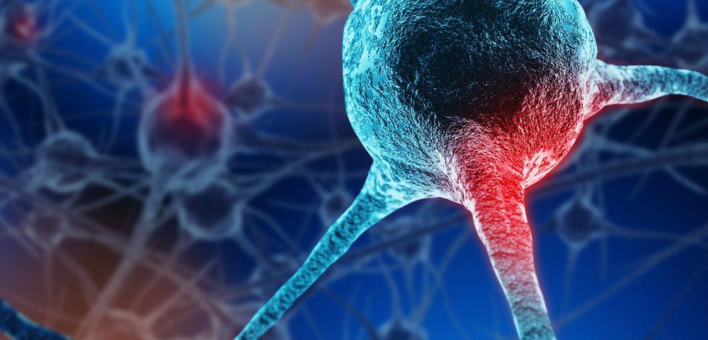 La activación de la proteína Nrf2 podría prevenir la degeneración de las células nerviosas en la ataxia de Friedreich