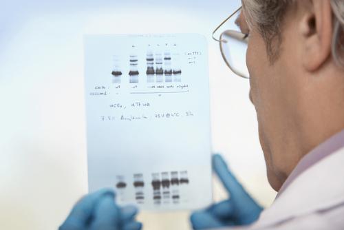 Investigadores desarrollan una molécula sintética para eludir la mutación del gen de la frataxina