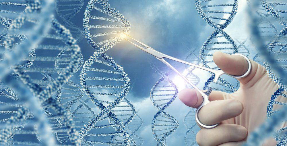 Los niveles demasiado altos de Frataxina pueden causar estrés y toxicidad celular
