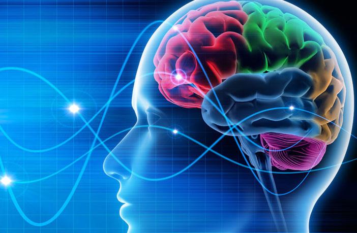 La estimulación cerebral no invasiva puede ayudar a tratar los síntomas de los trastornos raros del movimiento