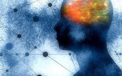 Hallazgo que vincula ELA/ ataxia al estrés celular abre la puerta a nuevos enfoques de tratamiento