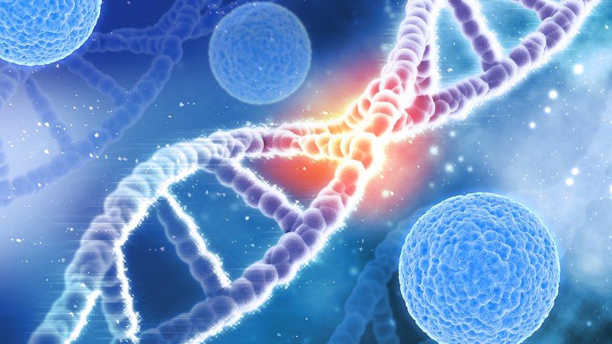 Los inhibidores de HDAC pueden revertir parcialmente la firma genética vinculada a FA