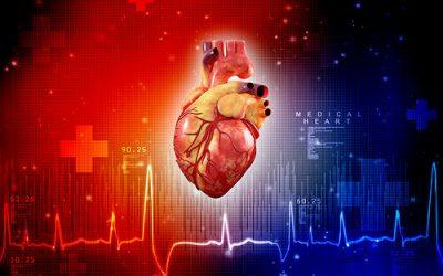 Imágenes del corazón y el tamaño de repetición de GAA pueden indicar problemas cardíacos con años de anticipación