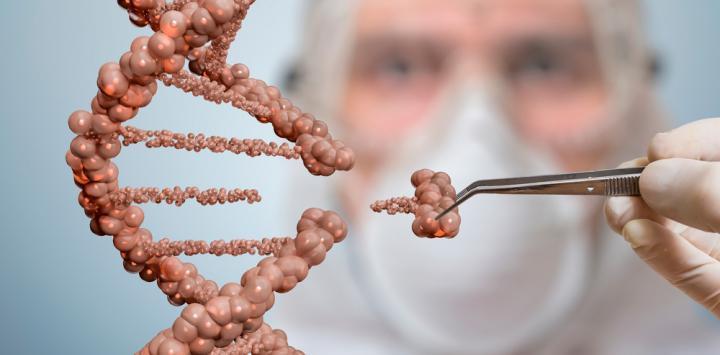 Terapia génica para el tratamiento de síndrome de Sanfilippo tipo A, ensayo clínico de fase 2/3