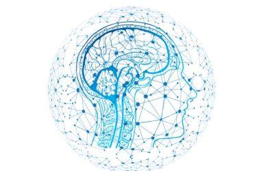 La hepcidina y su potencial terapéutico en los trastornos neurodegenerativos